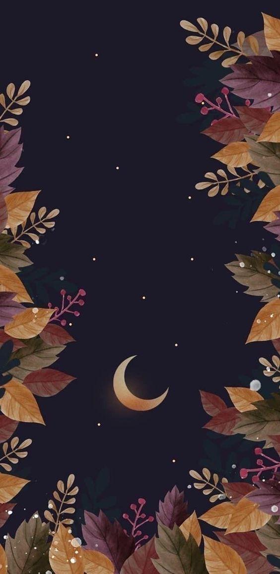 fall phone wallpaper 16