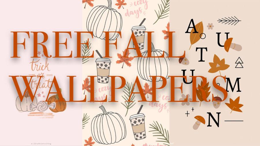 30+ Beautiful Free Phone Fall Wallpaper!
